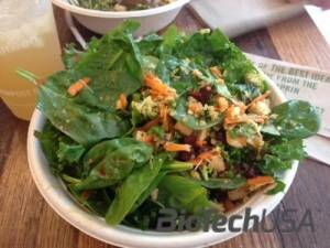 /sites/testbiotechusashop/documents/blog/_extra/165/o_sweetgreen-boston-spicy-sabzi-salad-500x375_20150219140512.jpg