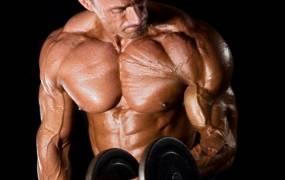 fogyj fehérjével könnyű fogyás hasról