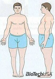 /sites/testbiotechusashop/documents/news/_extra/1322/o_endomorph_20130207154003.jpg
