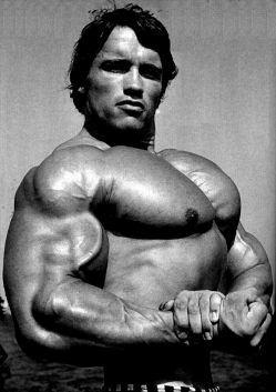 /sites/testbiotechusashop/documents/news/_extra/1328/o_arnold-schwarzenegger-bodybuilding-8_20130208161139.png