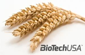 /sites/testbiotechusashop/documents/news/_extra/1672/o_Sources-of-Gluten_20140724134519.jpg