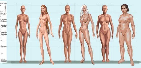 a00f2dfae6 Testalkattípusok, nők
