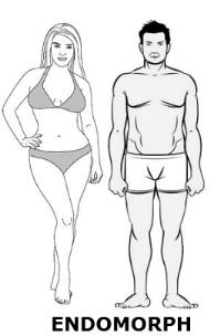 Endomorf dieta